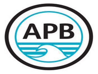Détails : APB World Bodyboarding Tour